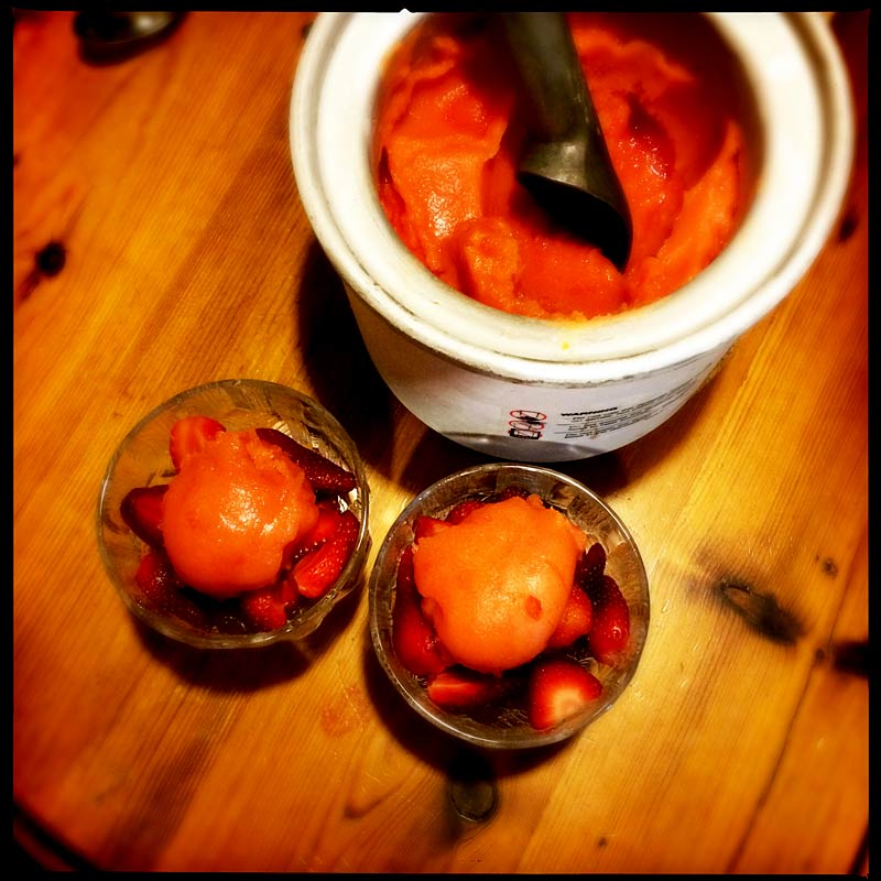 blood-orange-sorbet